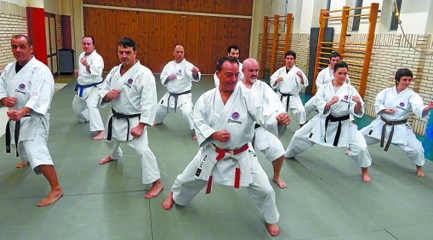 Shidokan karate – nowoczesna inspiracja