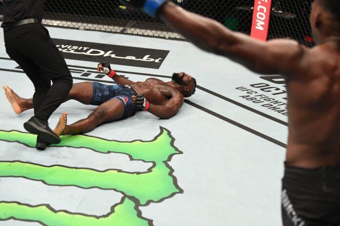 To jeden z najbardziej spektakularnych nokautów w historii MMA.